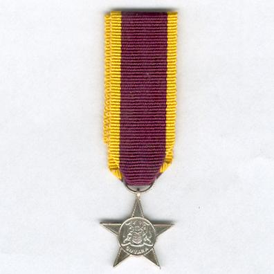 Military Service Star, miniature