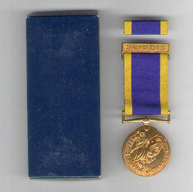 Reserve Defence Forces Long Service Medal with 'Seirbhís' top bar and with ribbon bar, in pasteboard case of issue